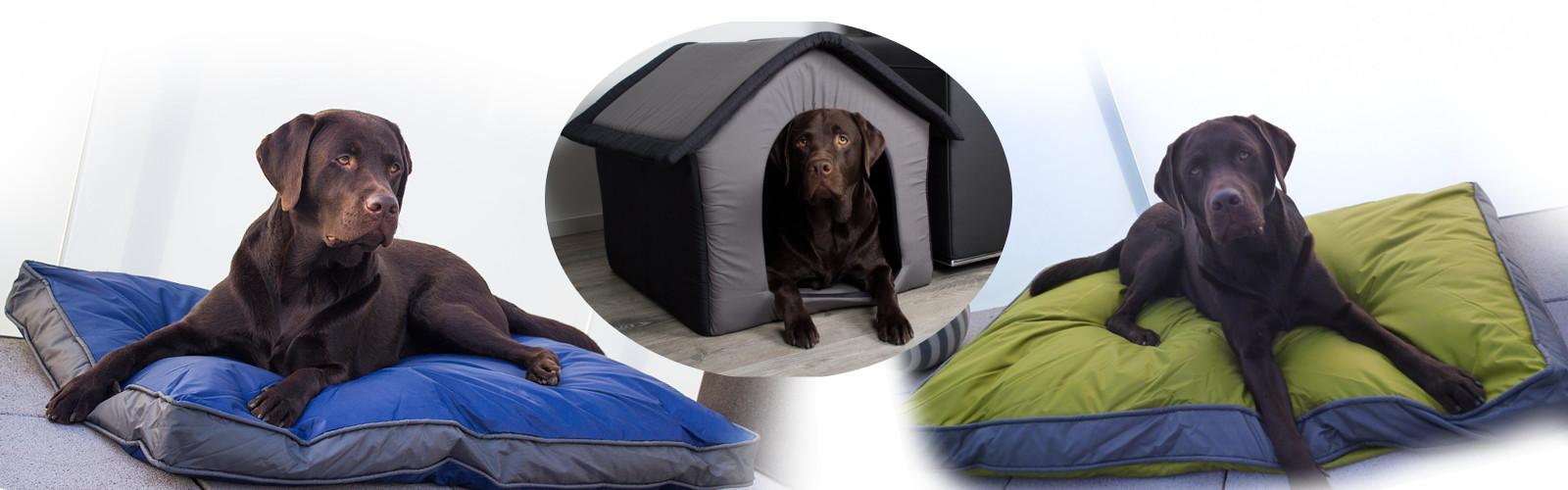 Neue Lieferung: Hundekissen auf Lager!