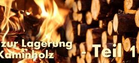 Tipps: Die Kaminholz-Lagerung – Teil 1